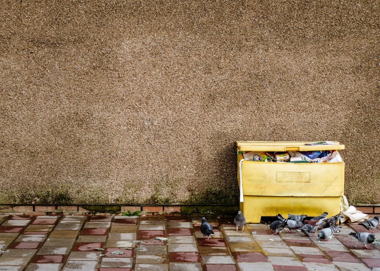 Wywóz gruzu i odpadów po remoncie i budowie