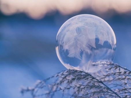 Jak zabezpieczyć byliny na zimę?