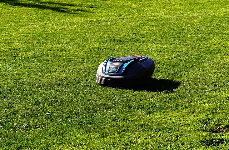 Roboty koszące - czy warto kupić do ogrodu?