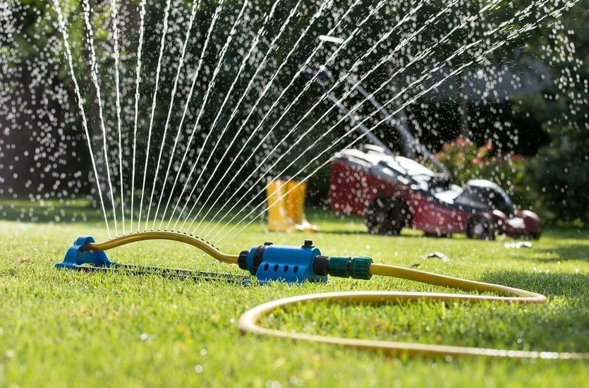 Jak zadbać o odpowiednie nawodnienie roślin w ogrodzie?